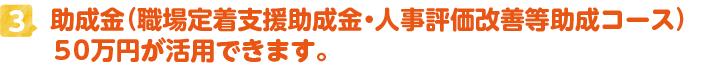 助成金(職場定着支援助成金・人事評価改善等助成コース)50万円が活用できます。